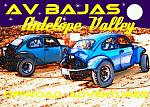 my baja bugs and buggies