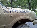 Tazmaniman's Ford Ranger